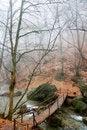 Free Wooden Bridge Across A Small River Stock Photos - 6680473