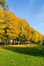 Free Autumn Day Stock Photos - 6684983