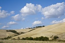 Free Tuscan Landscape Royalty Free Stock Photography - 6680507