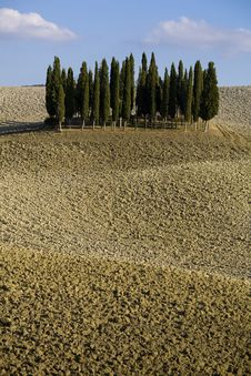 Free Tuscan Landscape Stock Photography - 6680962