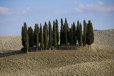 Free Tuscan Landscape Stock Image - 6681051