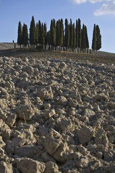 Free Tuscan Landscape Stock Image - 6681221
