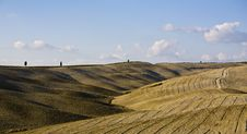 Free Tuscan Landscape Royalty Free Stock Image - 6681346