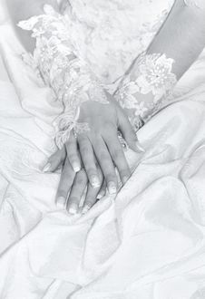 Free Hands Stock Photos - 6681453