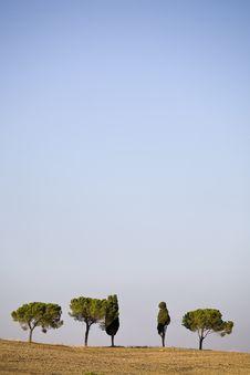 Free Tuscan Countryside Stock Photos - 6681873