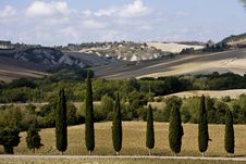 Free Tuscan Landscape Royalty Free Stock Photos - 6681888