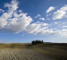 Free Tuscan Landscape Stock Photography - 6682312