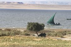 Egyptian Country Side - Lake Karoun Stock Photos