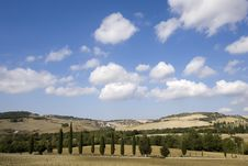 Free Tuscan Landscape Royalty Free Stock Photos - 6682648