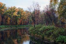 Free Autumn River 2 Royalty Free Stock Image - 6685006