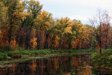 Free Autumn River Stock Photography - 6685152