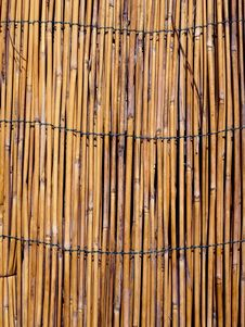 Free Bamboo Texture Stock Photography - 6685302