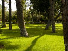 Free Green Park Stock Photo - 6685780