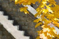 Free Stairs Stock Photo - 6686150