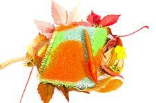 Autumn Hobby Stock Photos