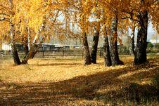 Free Mellow Autumn Stock Images - 6689034