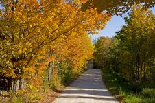 Free Autumn Lane Royalty Free Stock Photo - 6689445