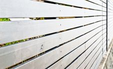 Free Peeping Through The Fence Stock Photography - 6689772
