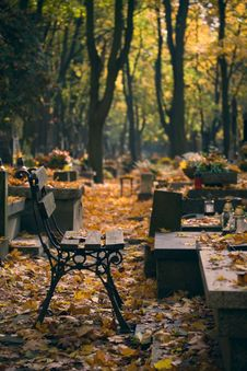 Free Bench On Cemetery Stock Photos - 6689793