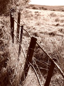 Rustic Fence Royalty Free Stock Photo