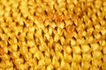 Free Mesh In A Sunflower Stock Photos - 6698873