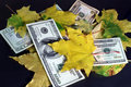 Free Autumn Leaf Fall Of Dollars On A Black Background Royalty Free Stock Image - 6699266