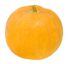 Free Pumpkin Royalty Free Stock Images - 6690509
