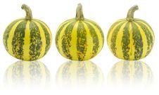 Free Pumpkin Stock Photo - 6690620