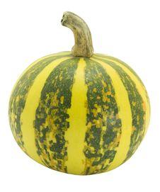 Free Pumpkin Stock Photos - 6690723