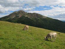 Free Italian Dolomite Royalty Free Stock Image - 6690766
