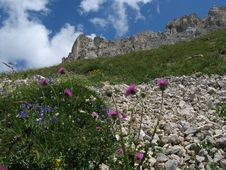 High Angle View Of Latemar Mountains, Dolomites Royalty Free Stock Photos