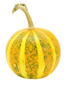 Free Pumpkin Stock Photos - 6690983