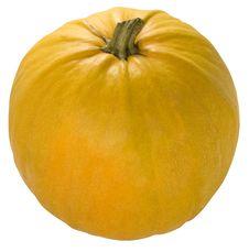 Free Pumpkin Royalty Free Stock Photo - 6691015