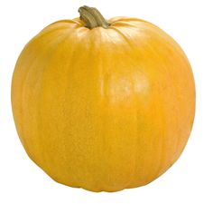 Free Pumpkin Royalty Free Stock Image - 6691066