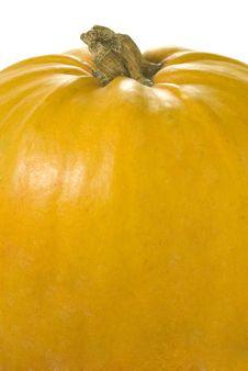 Free Pumpkin Stock Photos - 6691163