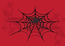 Spider Illustration Stock Photos
