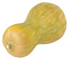 Free Pumpkin Stock Images - 6691374