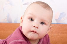 Free Attentive Look Of Baby Stock Photo - 6691550