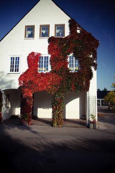 Free Autumn Stock Photo - 6691650