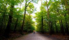 Free Nature Stock Photos - 6695673