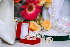 Free Wedding Bands Royalty Free Stock Images - 6698069