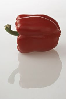 Free Red Pepper With Reflaection Stock Images - 670384