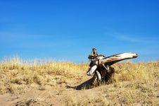 Free Driftwood Royalty Free Stock Image - 674186