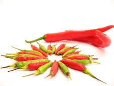 Free Big And Small Chillies Royalty Free Stock Image - 675136