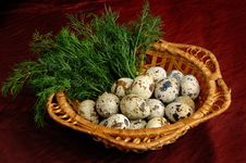 Free Quail Eggs 1 Stock Photos - 675643