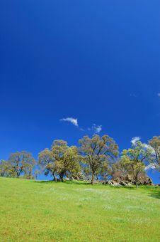 Free Springtime Landscape Stock Image - 676451
