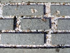 Free Petals And Bricks Stock Photo - 678770