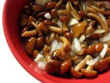 Free Marinaded Mushrooms Stock Photo - 679500