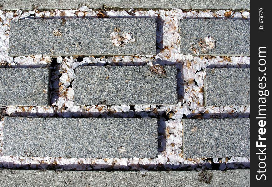 Petals and Bricks