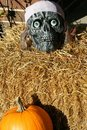 Free Halloween Skull Royalty Free Stock Photos - 6702258